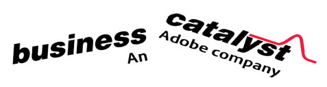 business catalyst